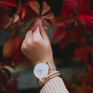 Anchor leather hazelnut rose gold